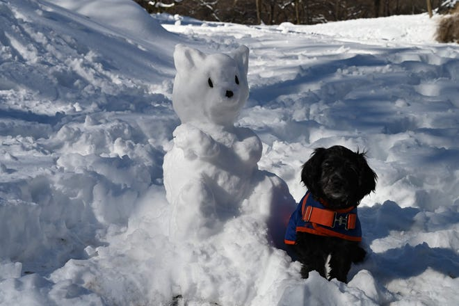 A dog sits near a snow animal in Central Park in New York City on February 4, 2021.