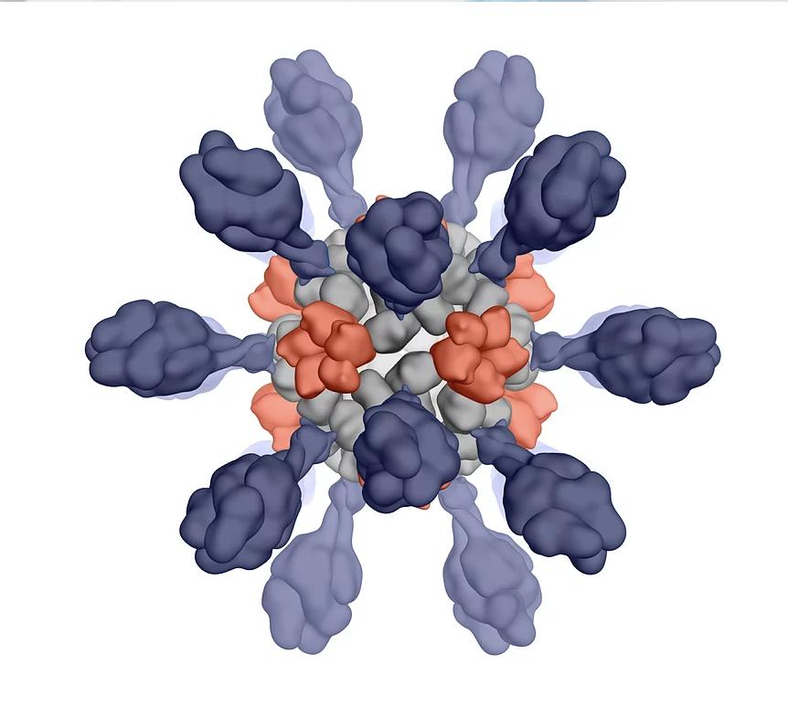 Univ. of Wash.-spinout Icosavax raises $100M to fund vaccine development technology